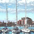 Southampton Ocean Village Marina by Martin Davey