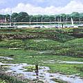 Southampton River Hamble by Martin Davey