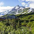 Southbound Alaska Railroad  by Kyle Lavey