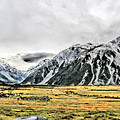 Southern Alps Nz by C H Apperson