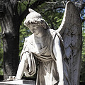 Southern Angel I by John  Nickerson