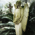 Southern Angel IIi by John  Nickerson