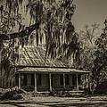 Southern Comfort Antique by Debra and Dave Vanderlaan