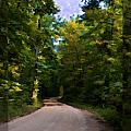 Southern Missouri Country Road I by Debbie Portwood