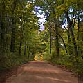 Southern Missouri Country Road II by Debbie Portwood