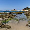 Aliso Creek Beach I I by Robert VanDerWal