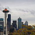 Space Needle by Diane Songstad