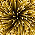 Spaghetti Noodles by Joe Belanger