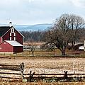 Spangler's Farm by John Rizzuto