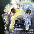 Spaniel In Thought by Susan A Becker