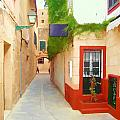 Spanish Alleyway by John Lynch