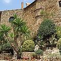 Spanish Church Garden by Carol Groenen