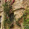 Spanish Church Wall by Carol Groenen