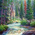 Sparkling Stream by Douglas Turner