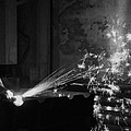 Sparks Bw by Elizabeth Sullivan