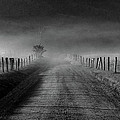 Sparks Lane In Black And White by Douglas Stucky