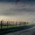 Sparks Lane Sunrise by Douglas Stucky