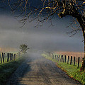 Sparks Lane Sunrise II by Douglas Stucky