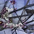 Sparrow And The Beauty Berry by Belinda Greb