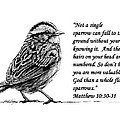 Sparrow Drawing With Scripture by Janet King