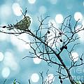 Sparrow In A Branch by Gabriela Insuratelu