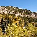 Spearfish Canyon Ridge by Dakota Light Photography By Dakota