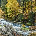 Spearfish Creek Autumn by Dakota Light Photography By Dakota