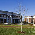 Special Collections Library And Alderman Library University Of Virginia by Jason O Watson