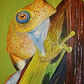 Speckled Frog by Siobhan Shene