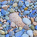 Speckled Stones by Elizabeth Dow