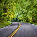 Speeding Through The Forest E42 by Wendell Franks