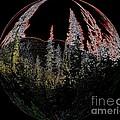 Spherescape 2  by Jeff Swan