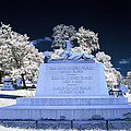 Sphinx Profile Near Infrared Blue And White by Sally Rockefeller