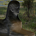 Sphinx Statue Three Quarter Profile Solar Usa by Sally Rockefeller