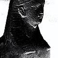 Sphinx Statue Torso Black And White Usa by Sally Rockefeller