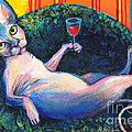 Sphynx Cat Relaxing by Svetlana Novikova