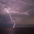 Spider Lightning Over Charleston Harbor by E Karl Braun