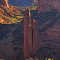 Spider Rock by Alan Vance Ley