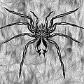 Spider Tatoo by Gregory Dyer