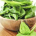 Spinach by Elena Elisseeva