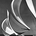Spinakers On Racing Sailboats by Underwood Archives