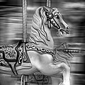Spinning Horses by Ricky Barnard