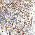 Spinodal Decomposition by Regina Valluzzi