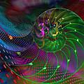 Spiral  by Ellen Vaman