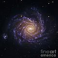 Spiral Galaxy Ngc 1232, Optical Image by Robert Gendler