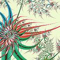Spiral Garden by Kevin Trow