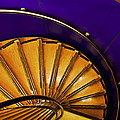 Spiral Staircase by Maria Coulson