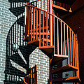 Spiral Stairs - Color by Darryl Dalton