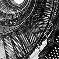 Spiral Steps by Sharon M Connolly