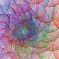 Spirale by Steve K